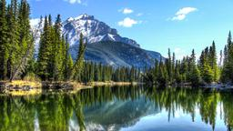 Find cheap flights from Calgary to Alberta