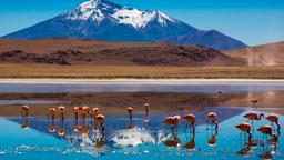 Find cheap flights to Bolivia