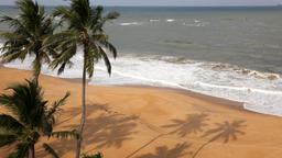Find cheap flights from Ontario to Colombo
