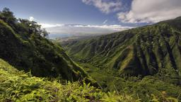 Find cheap flights from Bellingham to Kahului