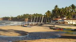 Find cheap flights from Quebec to Natal