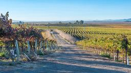 Find cheap flights to Sonoma