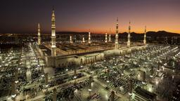 Find cheap flights from Toronto to Medina