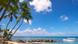 Find cheap flights from Calgary to Barbados
