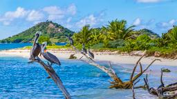 Find cheap flights from Ontario to Grenada