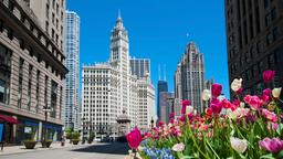 Hotels near Chicago O'Hare Airport
