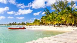 Find cheap flights from St. John's to Dominican Republic