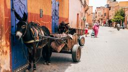 Marrakesh hotels in Medina