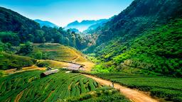 Find cheap flights from Calgary to Chiang Mai