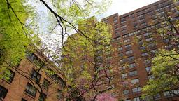New York hotels near New York University