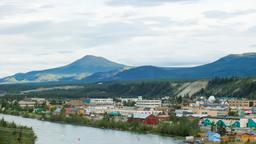 Find cheap flights from New York to Whitehorse